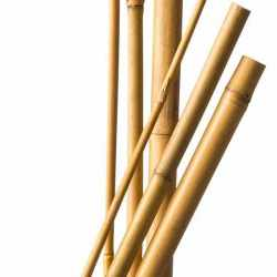 Bambus Štap 180cm