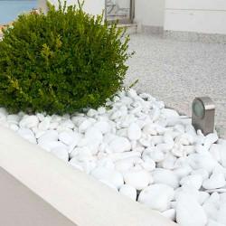 Kamen Beli oblutak 3-6cm Thasos