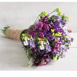 Suvo Cveće Miks Boja