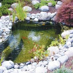Mini jezero ribnjak